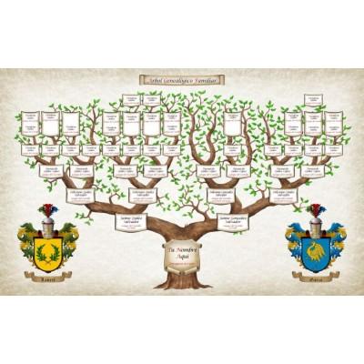 Árbol Antepasados 6 Generaciones